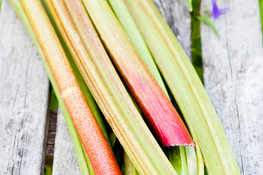 Perenna grönsaker - rabarber